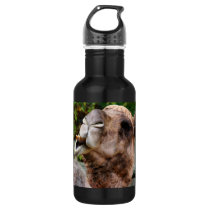 Funny Camel Wildlife Animal Photo Stainless Steel Water Bottle