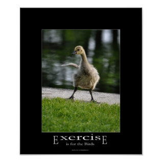 Funny Canada Goose Gosling Exercise Demotivational Poster at Zazzle