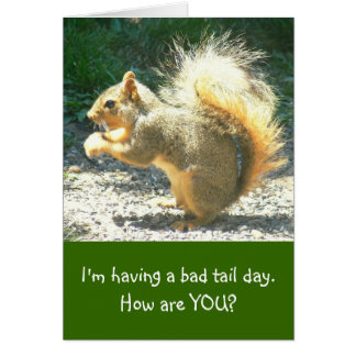 """funny card, photo/squirrel, """"Having Bad Tail Day"""""""