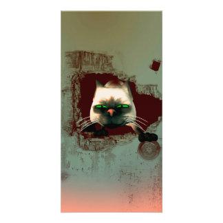 Funny cartoon cat photo card