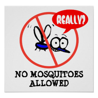 funny cartoon mosquito summer camping poster