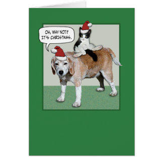 Funny Cat and Dog Christmas Greeting Card