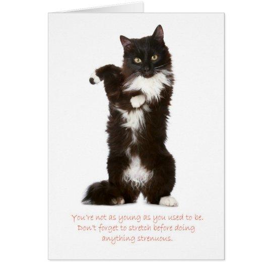 Funny Cat Birthday Card – Birthday Cards Cats