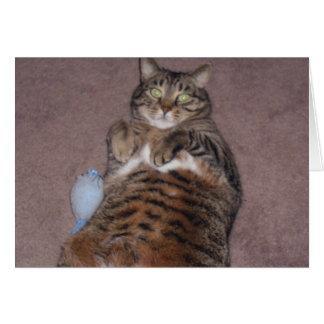Funny Cat Birthday Card (Large Print)