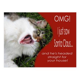 Funny Cat Christmas Postcard