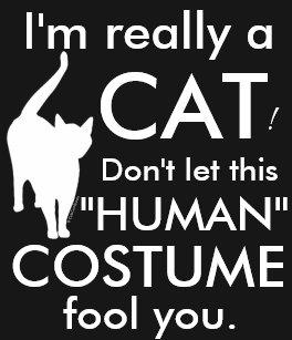 Funny Cat Costume Halloween Womens T Shirt