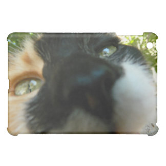 Funny cat face close up photo iPad mini cases
