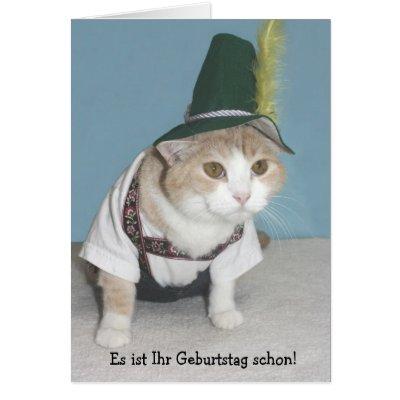 Funny Cat German Birthday Card – Birthday Cards Cats