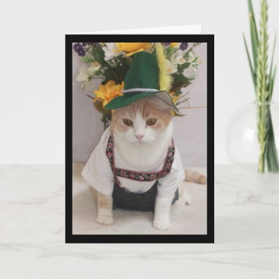 Funny Cat German Birthday Cards