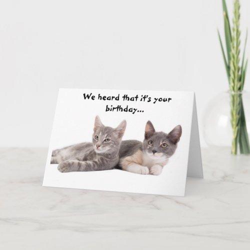 Funny Cat Give Us Tuna Birthday Card