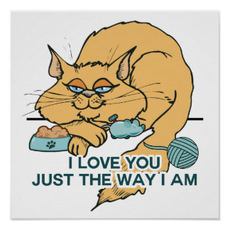 Funny Cat Graphic Saying Poster