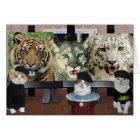 Funny Cat/Kitties Artists Encouragement Card