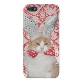 Funny Cat/Kitty Bunny iPhone SE/5/5s Cover