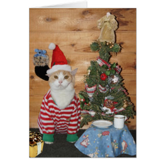 Funny Cat/Kitty Christmas Morning Greeting Card