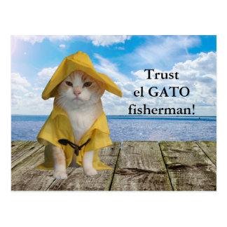 Funny Cat/Kitty Fisherman in Yellow Slicker Postcard