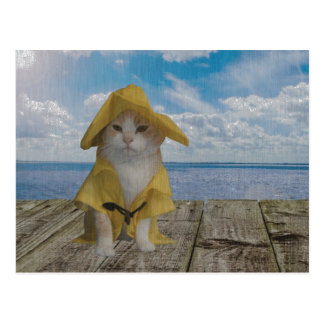 Funny Cat/Kitty in Yellow Slicker Postcard