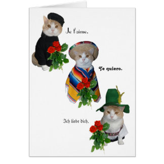Funny Cat/Kitty Love in Four Languages Valentine Card
