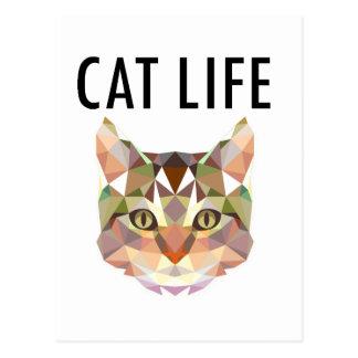 Funny Cat Life Design Postcard