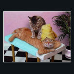 "Funny Cat Massage Postcard<br><div class=""desc"">Here a ginger cat is relaxing and having a back massage by another cat! Even funnier with the towel wrapped around the head!</div>"