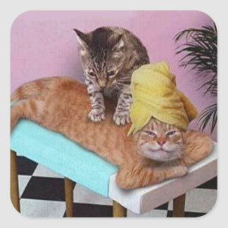 Funny Cat Massage Square Sticker