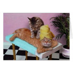 Funny Cat Massage Stationery Note Card