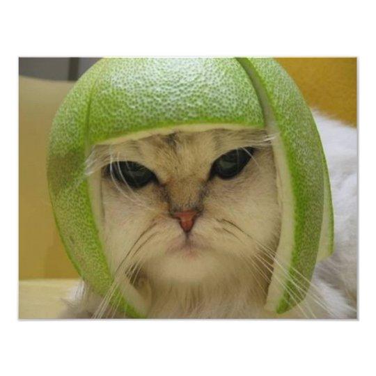 Funny Cat Merchandise Card