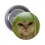 Funny Cat Merchandise Pinback Button