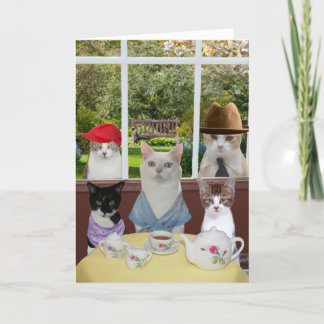 Funny Cat Mother's Day or Birthday Card