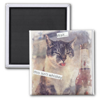 Funny Cat Needs Whiskey 2 Inch Square Magnet