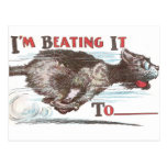 Funny Cat on the Run Post Cards