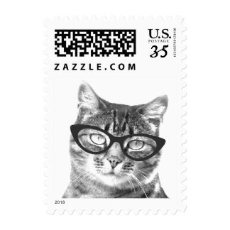 Funny cat photo postage stamps