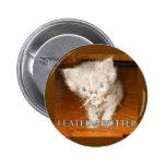 Funny cat pin