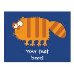 Funny Cat Post Card