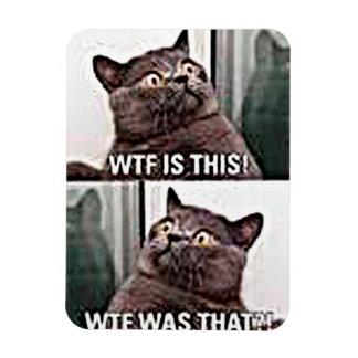 Funny Cat Rectangular Photo Magnet