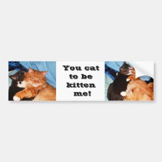 FUNNY CAT SAYING bumper sticker