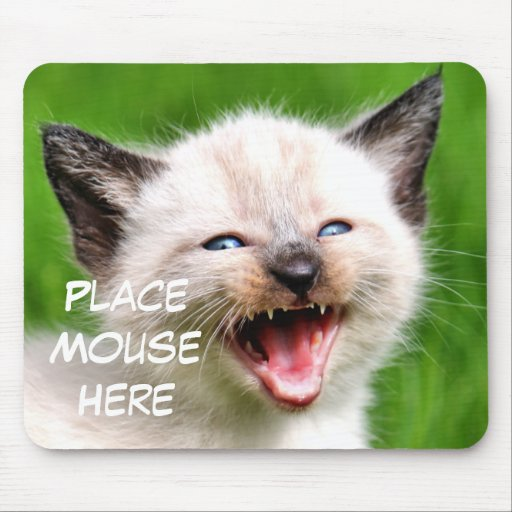 Funny Cat Siamese Kitten Place Mouse Here Mousepad