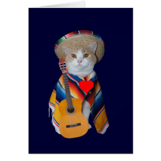 Funny Cat Spanish Valentine Greeting Card