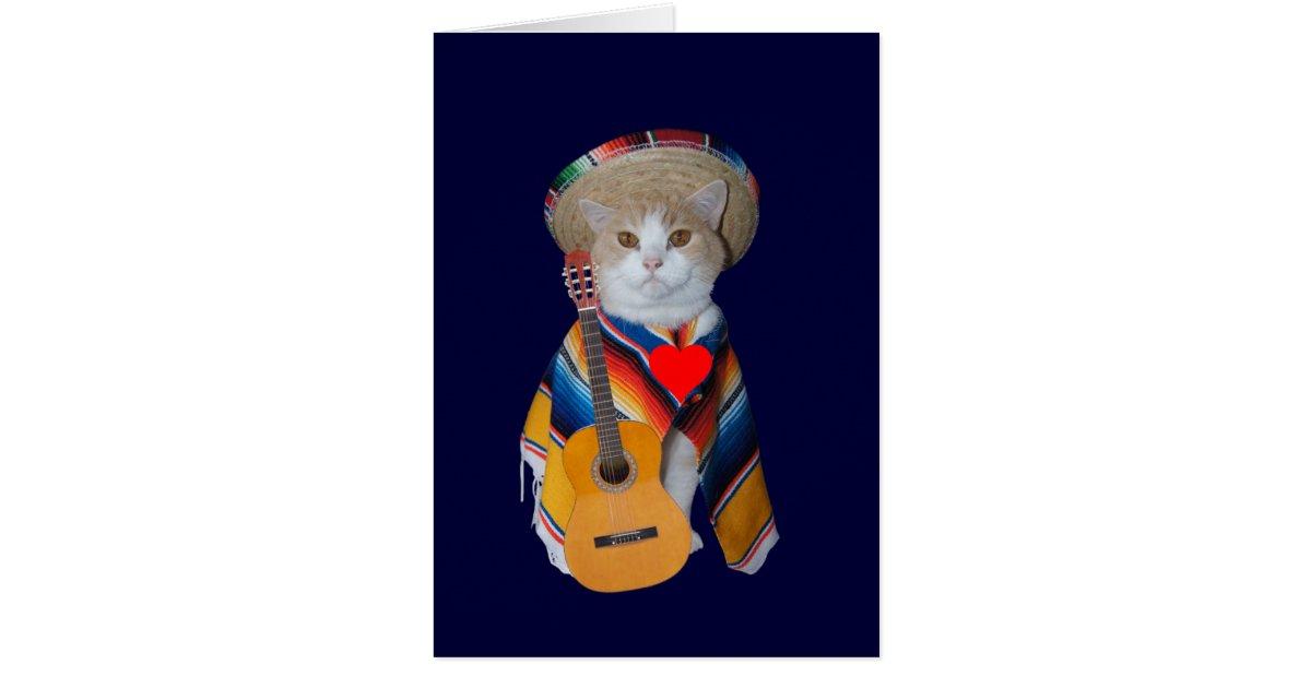 Funny Cat Spanish Valentine Card  Zazzlecom