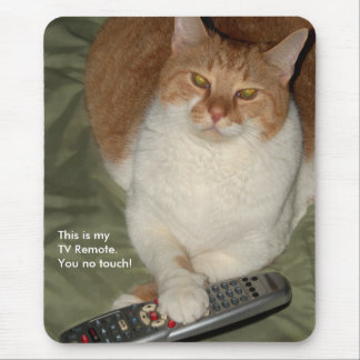 Funny cat TV remote Mousepad