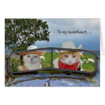 Funny Cat Valentine for Sweetheart Card