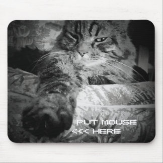 Funny cat wants mouse mouse pad