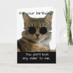 "Funny Cat Wearing Glasses Birthday Card<br><div class=""desc"">A card for your favorite cat-loving person who has a good sense of humor,  and is hitting those landmark birthdays.</div>"