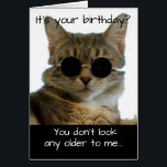 """Funny Cat Wearing Glasses Birthday Card<br><div class=""""desc"""">A card for your favorite cat-loving person who has a good sense of humor,  and is hitting those landmark birthdays.</div>"""