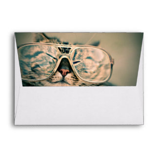Funny Cat with Glasses Envelope