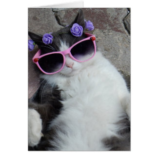 Funny cat with pink glasses greeting card