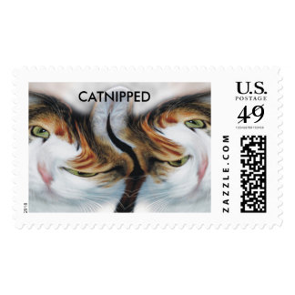Funny Catnipped Cats Postage