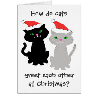 Funny Cats Christmas Card