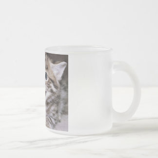 Funny Cats Frosted Glass Coffee Mug