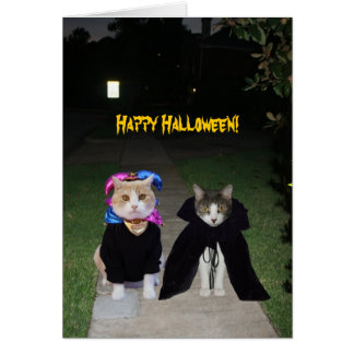 Funny Cats Halloween Card