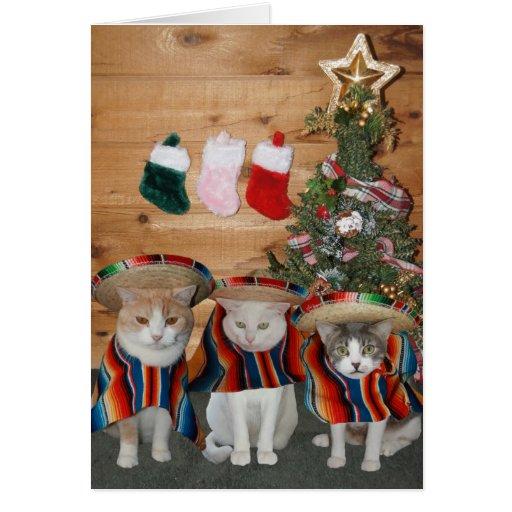 Funny Cats/Kitties Feliz Navidad Greeting Card